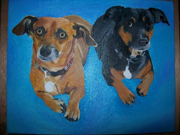 Datson Poster featuring the painting Pet Portrait Original Oil Painting On Canvas By Pigatopia by Shannon Ivins
