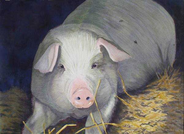 Pig Poster featuring the painting Petunia by Ally Benbrook