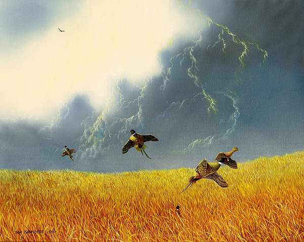 Pheasants Poster featuring the painting Pheasants On The Rise by Don Griffiths