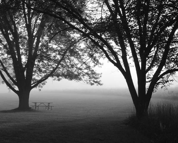 Fog Poster featuring the photograph Picnic In The Fog by Lauri Novak