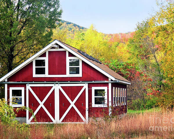 Barn Poster featuring the photograph Picturesque by Betty LaRue
