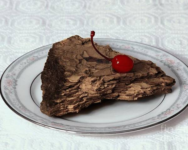 Imitation Poster featuring the photograph Piece Of Pine Cake With Cherry. by Viktor Savchenko