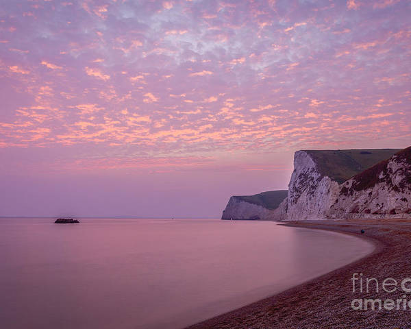 Cliffs Poster featuring the photograph Pink Jurassic Coast by Philip Pound