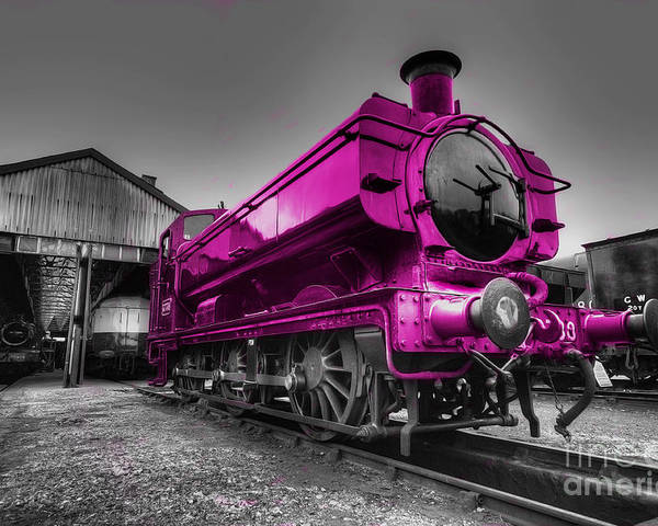 Steam Poster featuring the photograph Pink Pannier by Rob Hawkins