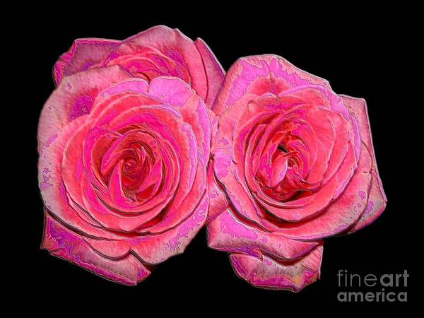 Two Pink Roses Poster featuring the photograph Pink Roses With Enameled Effects by Rose Santuci-Sofranko