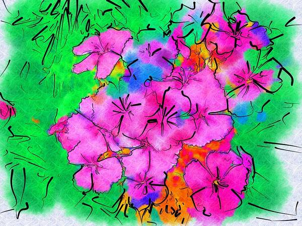 Garden Poster featuring the photograph Pinks Drawing by Donna Bentley