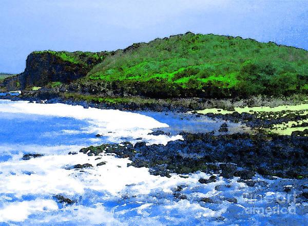 Pohaku Beach Poster featuring the photograph Pohaku Mauliuli Beach by James Temple