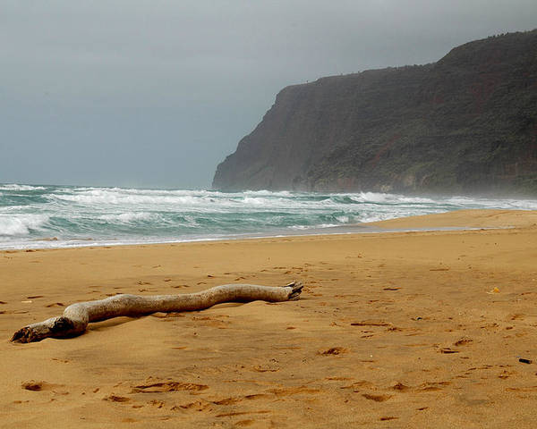 Beach Poster featuring the photograph Polihale State Park by Kathy Schumann