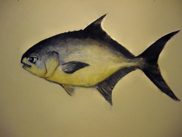 Pompano Fish Poster featuring the painting Pompano by Robert Cunningham