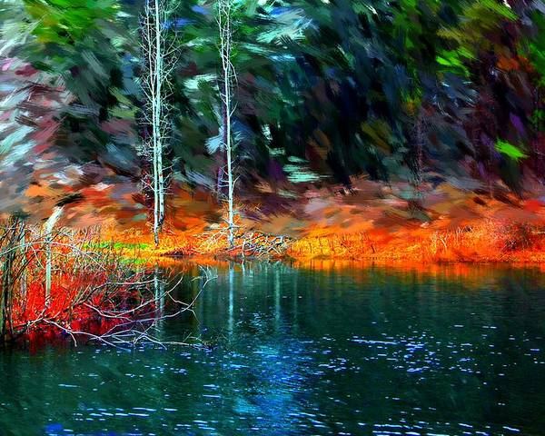 Digital Photograph Poster featuring the photograph Pond In The Woods by David Lane