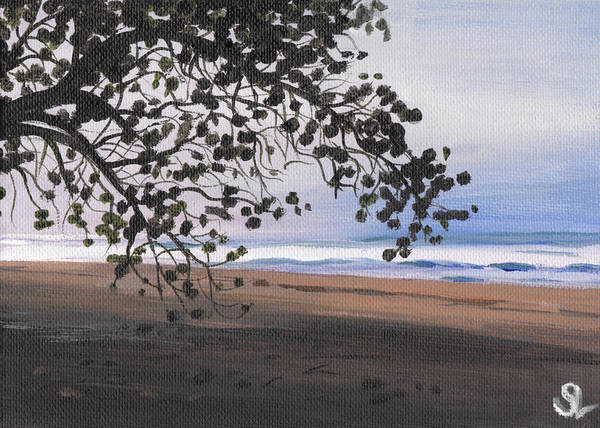 Puerto Rico Poster featuring the painting Pools Beach by Sarah Lynch