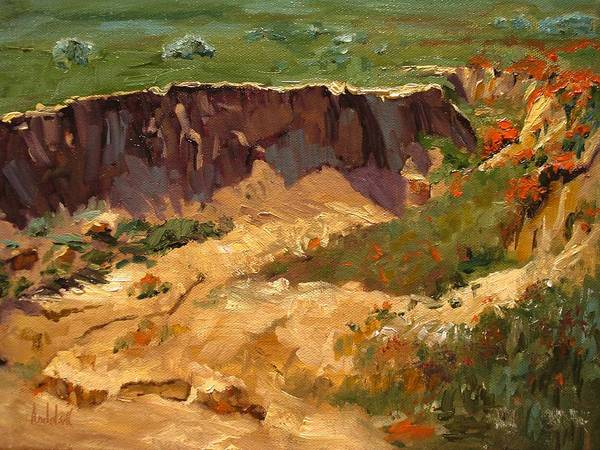 Landscape Poster featuring the painting Poppy Gorge by Barbara Andolsek