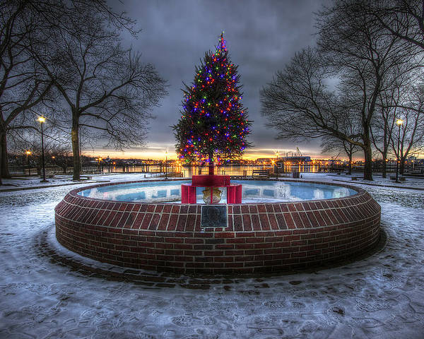 Prescott Poster featuring the photograph Prescott Park Christmas Tree by Eric Gendron