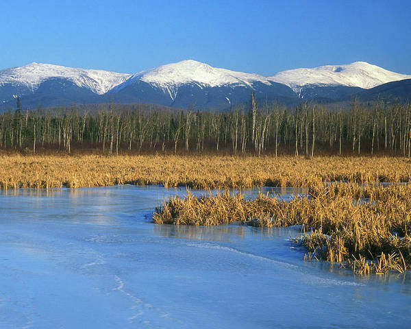 New Hampshire Poster featuring the photograph Presidential Range From Pondicherry Refuge by John Burk