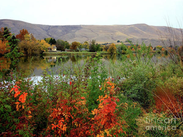 Prosser Poster featuring the photograph Prosser Autumn River With Hills by Carol Groenen