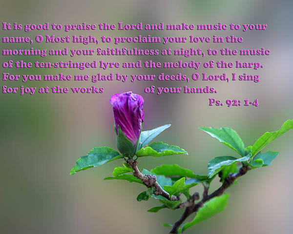 Scripture Poster featuring the photograph Psalms Scripture With Floral Bud by Linda Phelps