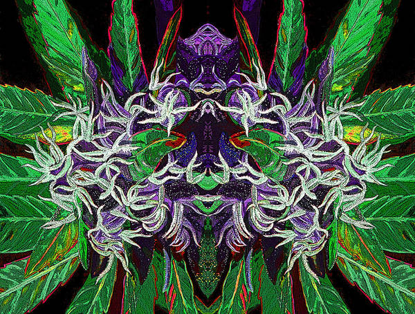 Cannabis Poster Featuring The Digital Art Psychedelic Bud 2 By Anita Toke