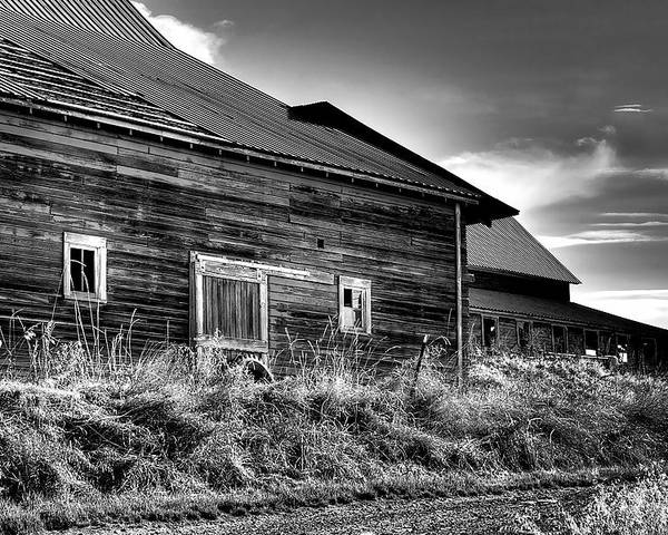 Landscape Poster featuring the photograph Pullman Barns by David Patterson