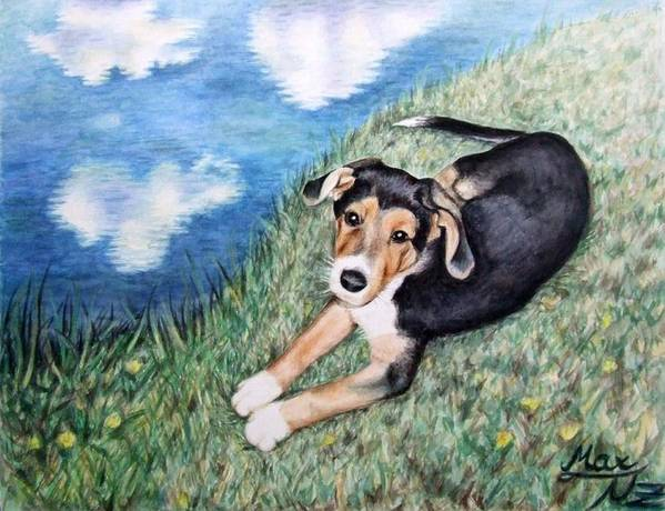 Dog Poster featuring the painting Puppy Max by Nicole Zeug