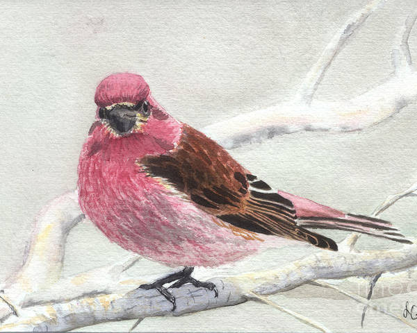 Bird Poster featuring the painting Purple Finch by Lynn Quinn