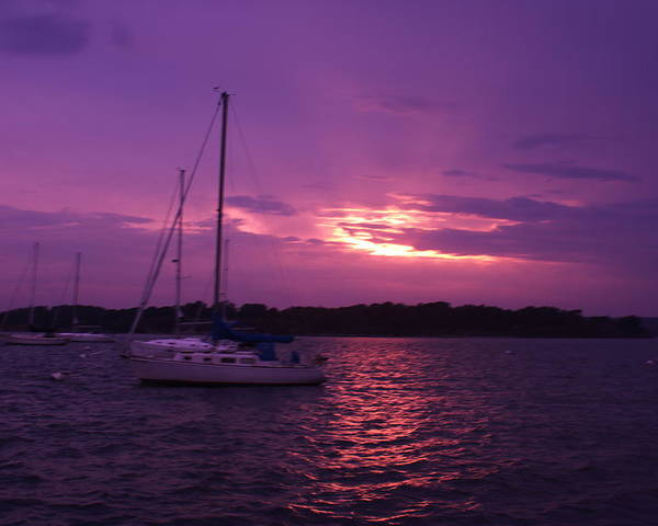 Poster featuring the photograph Purple Sunset by Kevin Rabbitt