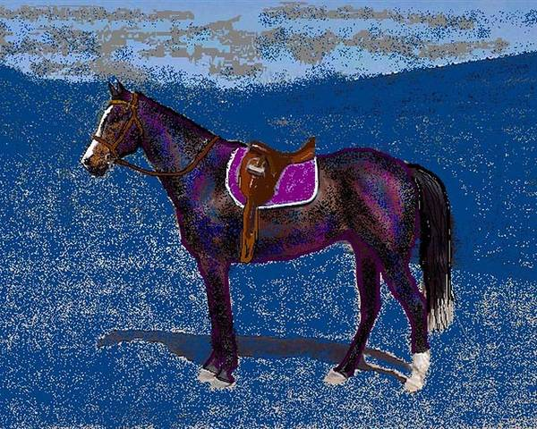 Horse Poster featuring the digital art Purple Whiskey by Carole Boyd