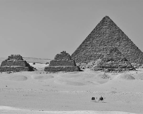 Egyptian Poster featuring the photograph Pyramids At Giza by Dave Lees