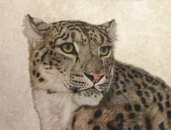Snow Leopard Poster featuring the painting Queen Of The Himalayas by Jacquie Vaux