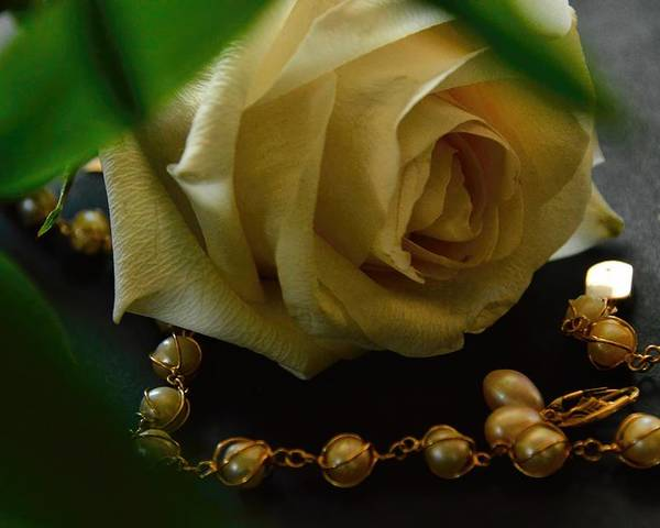 Pearls Poster featuring the photograph Quiet Beauty by Diana Mary Sharpton