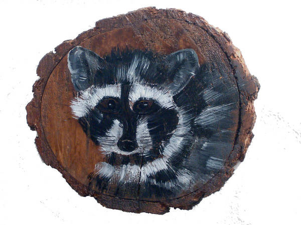 Racoon Poster featuring the painting Raccoon by Mikki Alhart