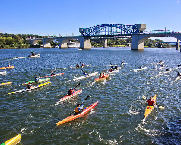 Market Street Bridge Poster featuring the photograph Race On The River by Tom and Pat Cory