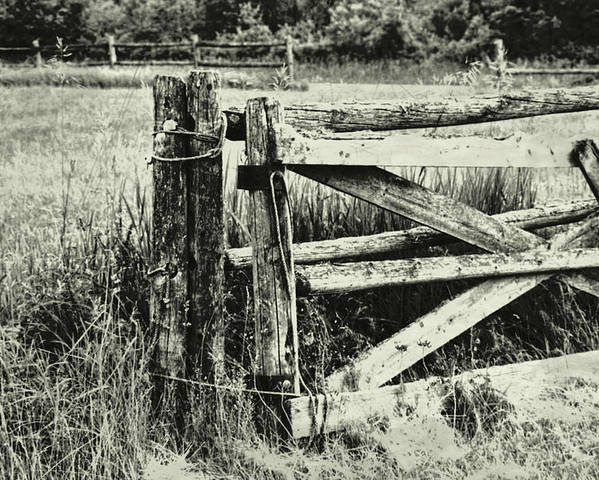 Rail Poster featuring the photograph Rail Fence by JAMART Photography