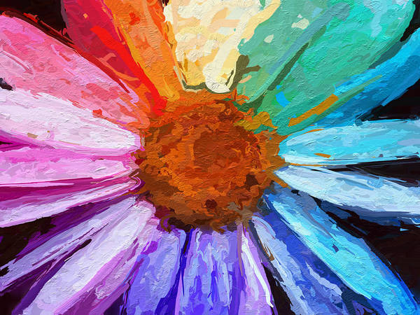 RAINBOW DAISY FLOWERS CANVAS WALL PRINTS ART PICTURES POSTERS PLANT IMAGES