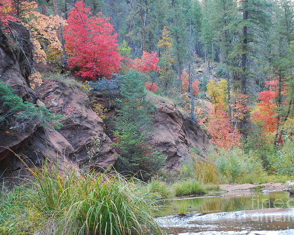 Sedona Poster featuring the photograph Rainbow Of The Season With River by Heather Kirk