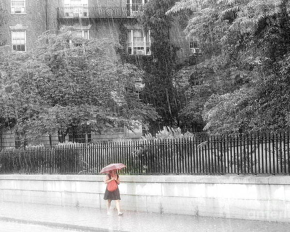 Rain Poster featuring the photograph Rainy Day by Julie Lueders