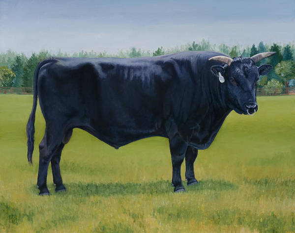 Bull Poster featuring the painting Ralphs Bull by Stacey Neumiller