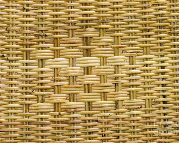 Poster featuring the photograph Rattan by Thakoengphon Sakkakit