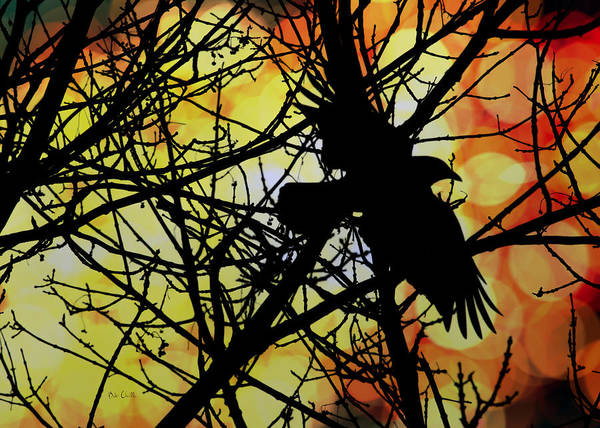 Raven Poster featuring the photograph Raven by Bob Orsillo