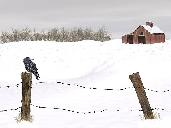 Winter Poster featuring the painting Raven In Winter by Barb Kirpluk