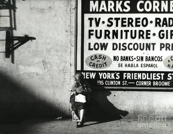 Erik Poster featuring the photograph Reading 1964 by Erik Falkensteen