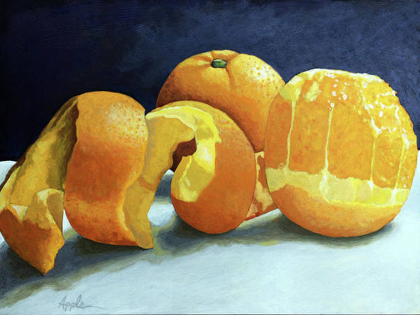 Oranges Poster featuring the painting Ready For Oranges by Linda Apple