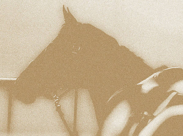 Horses Poster featuring the digital art Ready To Ride by Donna Thomas