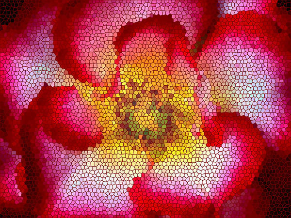 Floral Poster featuring the photograph Red And White And Glass by Leonard Rosenfield