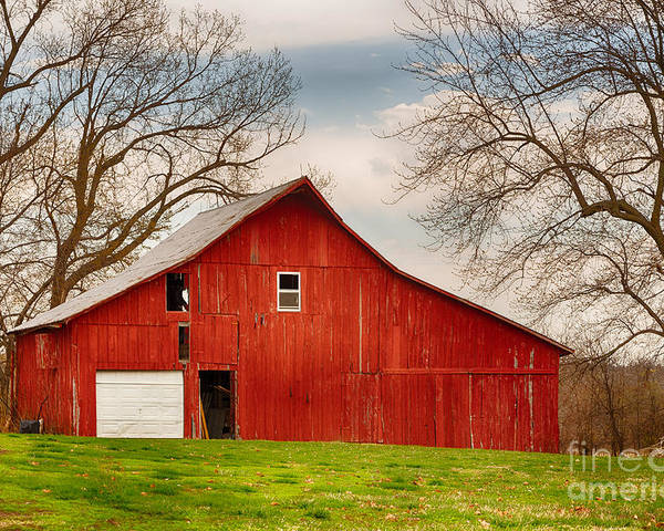 Farm Poster featuring the photograph Red Barn In The Blue Sky by Terri Morris