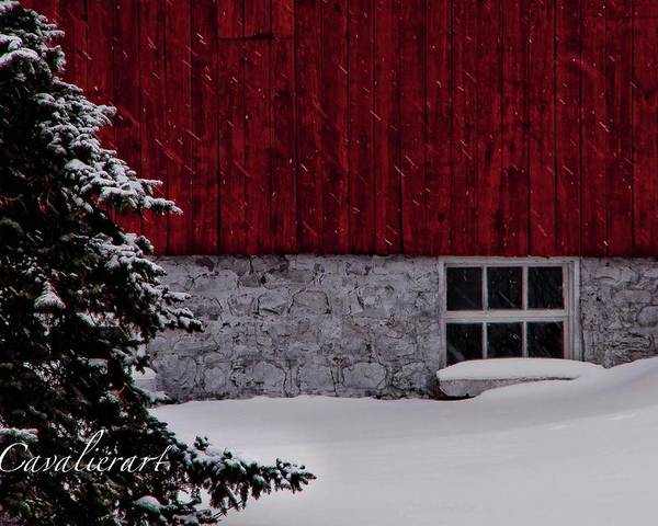Barn Poster featuring the photograph Red Barn by Sherri Cavalier