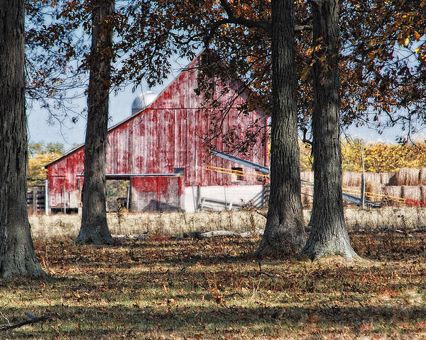 Agriculture Poster featuring the photograph Red Barn Through The Trees by Pamela Baker