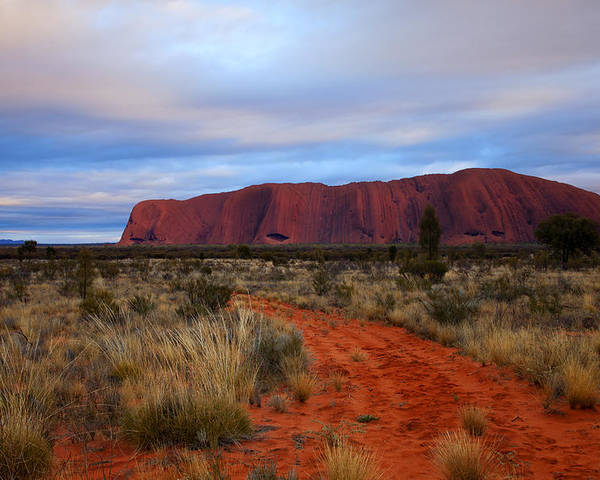 Ularu Poster featuring the photograph Red Center Dawn by Mike Dawson