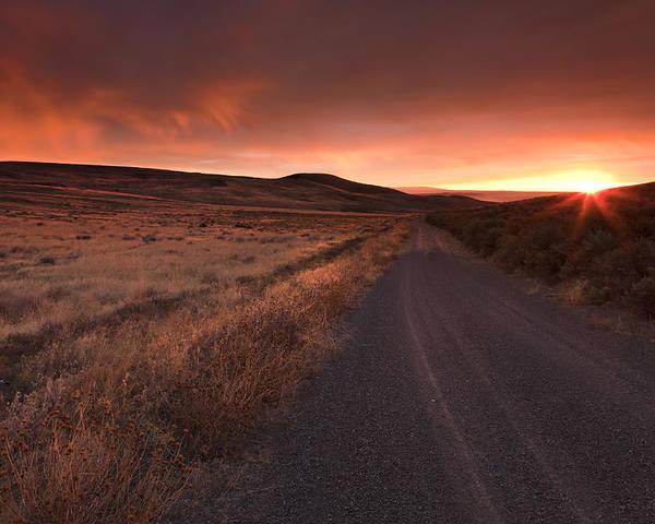 Country Road Poster featuring the photograph Red Dawn by Mike Dawson