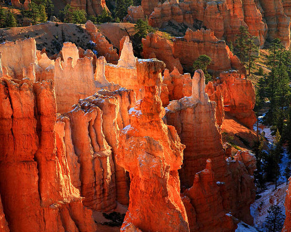 Bryce Poster featuring the photograph Red Glow On Thor's Hammer In Bryce Canyon by Pierre Leclerc Photography