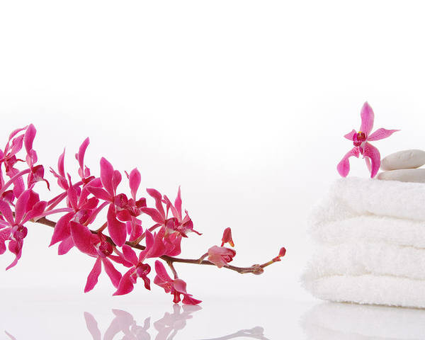 Spa-treatment Poster featuring the photograph Red Orchid With Towel by Atiketta Sangasaeng